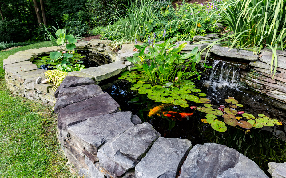 Backyard Ponds & Water Features| Garden Pond Design ...
