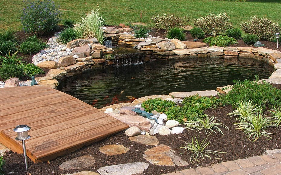 Backyard ponds water features garden pond design for Pond installation